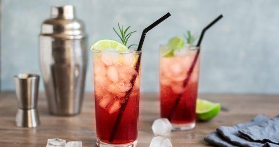 Sloe Gin Fizz Cocktail